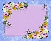 Spring flowers border butterflies