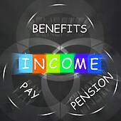 Financial Income Displays Pay Benefits and Pension