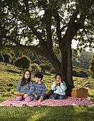 three kids picnic