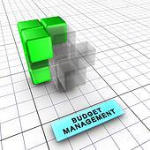 3-Budget management (3/6)