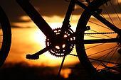 Sunset on a Bike