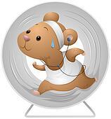 Hamster Exercising