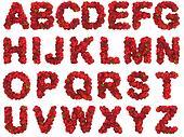 Raspberry alphabet on white background