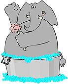 Elephant In A Washtub