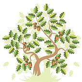 Oak With Acorn