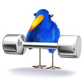3d Bluebird lifting weights