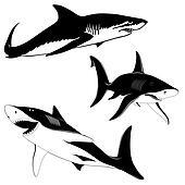 Set of three sharks
