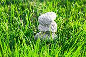 stones against the background  lush spring green grass