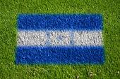 flag of honduras on grass