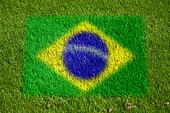 flag of brazil on grass