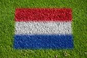 flag of netherlands on grass