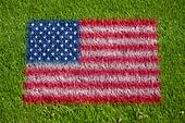 flag of usa on grass