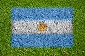 flag of argentina on grass