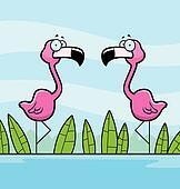 Flamingos Water