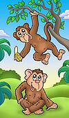 Two cartoon monkeys