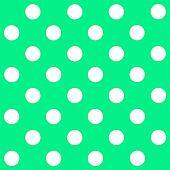 White Polka Dot on pastel green background