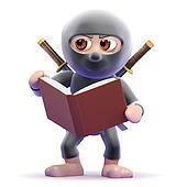 3d Ninja studies