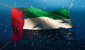 United Arab Emirates Under Water Sea Flag National Torn Bubble 3D