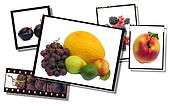 Fresh healthy food images film strip and film plates, high detail