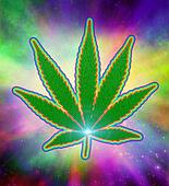 Marijuana Psychedelic