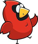 Cardinal Walking