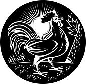 Rooster cockerel crowing done in woodcut style and in black and white