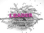 3d image Leader concept word cloud background