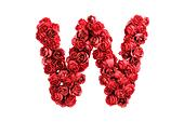 Red roses letter W, isolated on white background