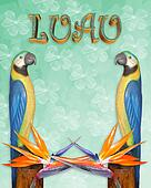 Luau invitation tropical background