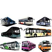 Eight city buses. Coach. Vector il