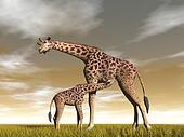 Mum and baby giraffe - 3D render