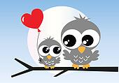 two sweet grey owls love