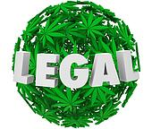 Legal Marijuana Leaf Ball Sphere Medical Use Prescription Pain R