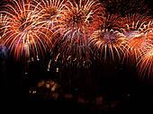 Beautiful Firework Grand Finale