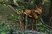 Fairy and Buck