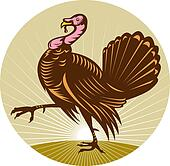 Wild turkey walking side view done in retro woodcut style with sunburst in background