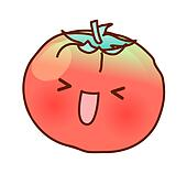 A view of tomato