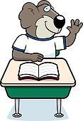 Koala Student