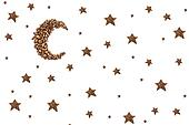 Moon and stars from coffee beans isolated on white