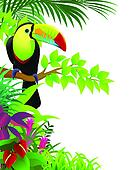 Toucan bird in the tropical forest