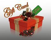 Christmas present gift card