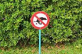 Signs symbolize ban feces dog