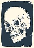 Isolated vintage skull illustration
