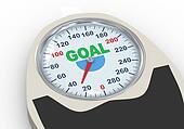 3d weight scale with word goal
