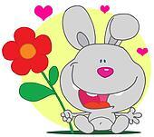 Sweet Gray Bunny Rabbit