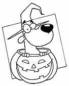 Outlined Dog in Pumpkin