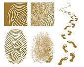Fingerprints and Footprints