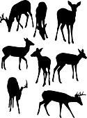 Whitetail Deer Silhouettes