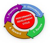 3d performance development cycle