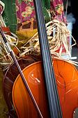 Thanksgiving Cello Violin Halloween
